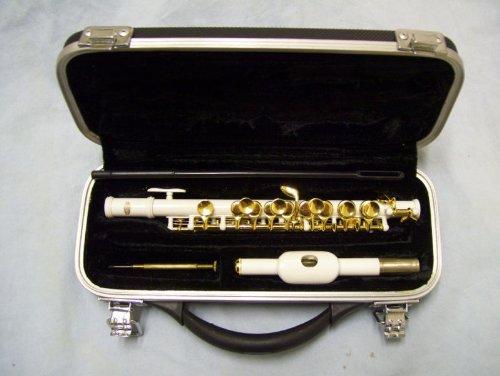 Piccolo with case, White