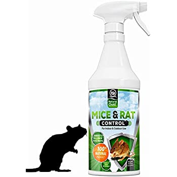 Amazon.com : Mouse Away Solids - 4 Pack (The Original