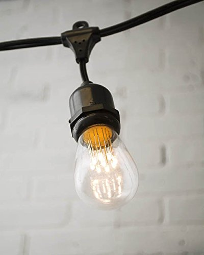 commercial led edison drop string lights 48 ft black wire s14 warm white. Black Bedroom Furniture Sets. Home Design Ideas