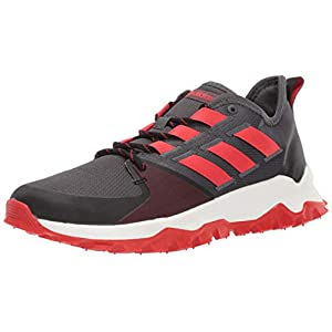 adidas Men's Kanadia Trail