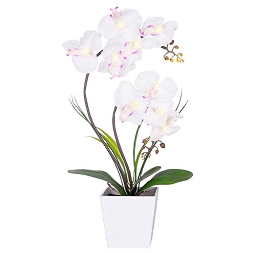 FANStek 2AA LED Lighted Artificial Orchid Arrangement-Battery Operated Orchid Pot with 9 Lights (White) (Lamp Flower Table)