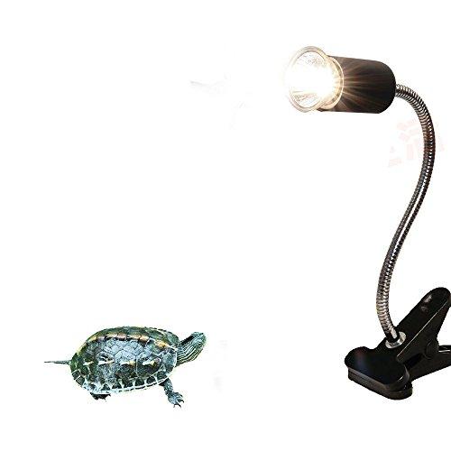 heat lamp light holder clamp lamp fixture for reptiles heat lamps. Black Bedroom Furniture Sets. Home Design Ideas