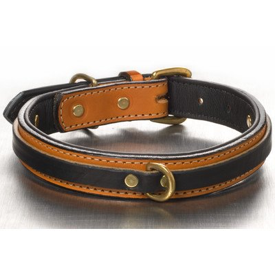 Woofwerks Tucker Overlay Collar, 1 by 16-Inch, Tan/Black