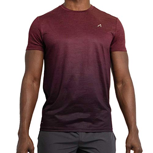 Alive Men's Tee Shirt Active Quick Dry Workout Short Sleeve Shirts Crew Neck (X-Large, Sonoma Red Heather/Deep Mullberry - Mens T-shirt Alive