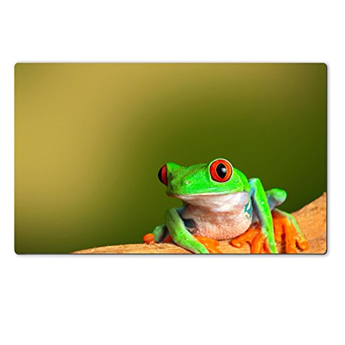 Luxlady Natural Rubber Large TableMat IMAGE ID: 19870616 red eyed treefrog from Costa Rica tropical rainforest This vibrant tree frog is often kept as an exotic amphibia
