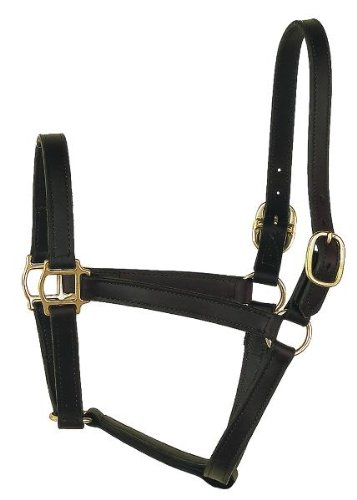 (Perri's Track Style Leather Turnout Halter, Black, Oversize)