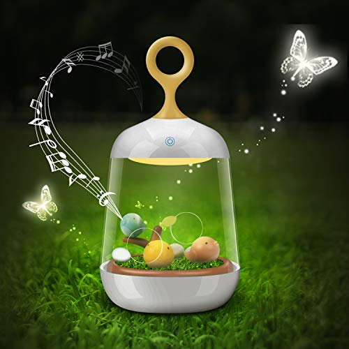 Cute Birdcage Color Changing Night Light with Timer, Music Box Decorative Lamp Wedding Christmas Birthday Gifts for Kids, Mother, Lover Review