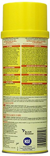 Easy Off Professional Oven & Grill Cleaner Aerosol, 24 oz, Pack of 2 by Easy Off (Image #1)