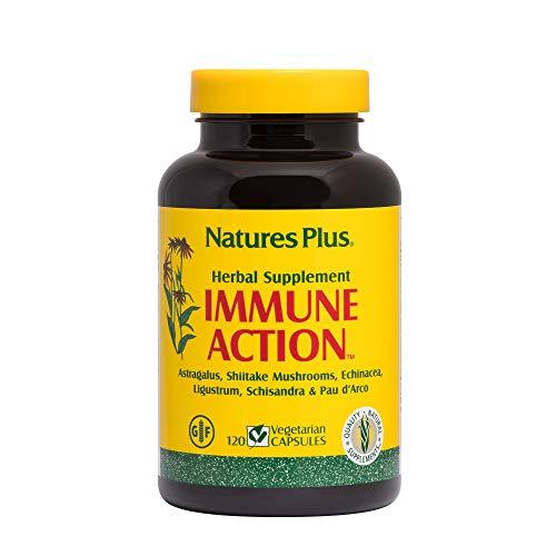 Natures Plus Immune Action - 120 Vegetarian Capsules - Powerful Herbal Blend of Echinacea, Shiitake Mushrooms & Astragalus - Immune System Support Supplement - Gluten Free - 120 Servings