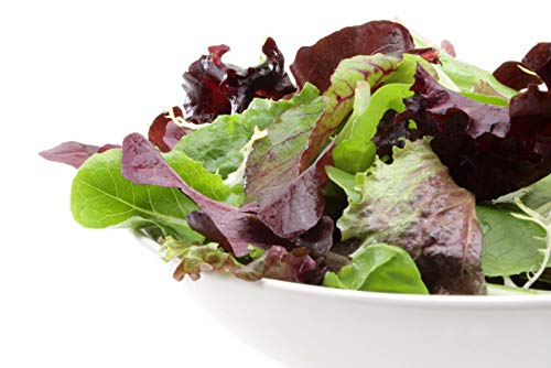 500+ Gourmet European Mesclun Mix Salad Blend Seeds ORGANICALLY Grown 15 Varieties Non-GMO Delicious and Healthy, Grown in USA. Perfect for Salad, Baby Greens or - Salad Greens Baby