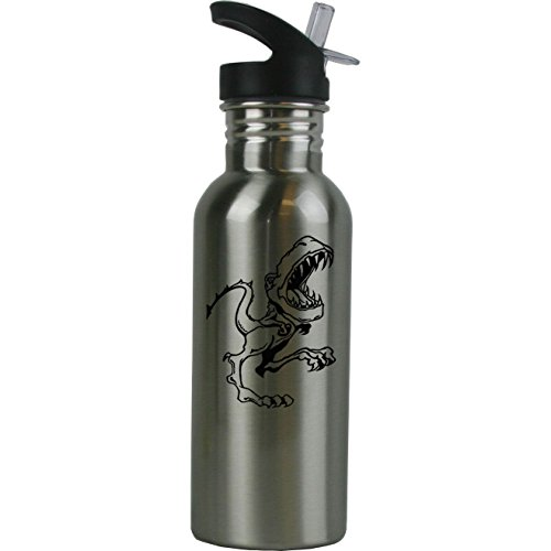 Personalized Custom T-Rex, Dinosaur, Tyrannosaurus Stainless Steel Water Bottle with Straw Top 20 Ounce Sport Water Bottle Customizable (Black)