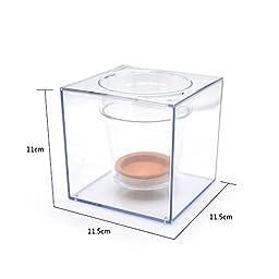 Flower Pot Aquarium,Transparent Self-Watering Mini Plant Pot Fish Tank,Beautiful DIY Home Office Desk Decor Christmas Gift,Complimentary:Crude Pebbles Stone