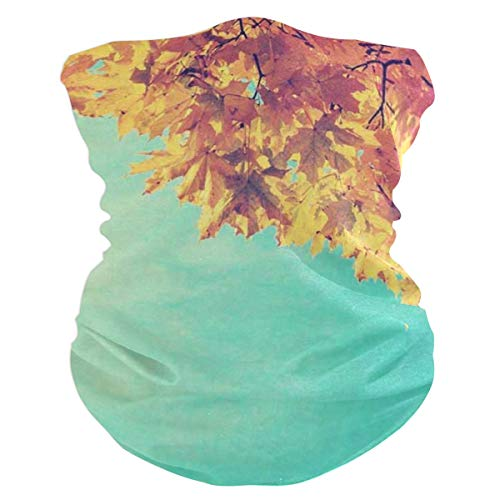 Blue Sky Fall Trees LeavesHeadband Womens Bandana Mens Balaclava,Neck Warmer,Face Mask,Neckerchief Aliceband
