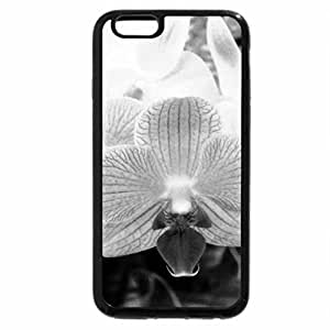 iPhone 6S Plus Case, iPhone 6 Plus Case (Black & White) - Flowers and Leafs 19