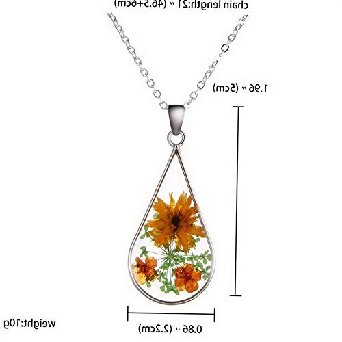 Kaputar Fashion Heart Dried Flower Glass Bottle Pendant Necklace Woman Party Jewelry New | Model NCKLCS - 18107 |