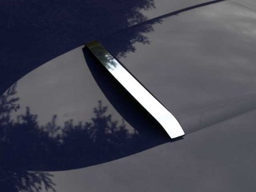 The Chrome Warehouse Fits 2002-2004 FORD THUNDERBIRD 2-door (Scoop)-Stainless Steel ()