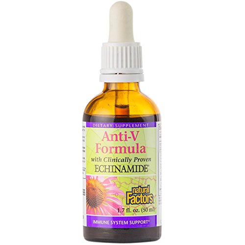 Natural Factors - Anti-V Formula with Echinamide, Immune System Support, Powerful Echinacea and Reishi, 33 Servings (1.7 oz) (Kids Echinacea Purpurea Tincture)