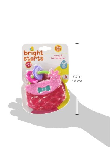 41EsO zxmWL - Bright Starts Pretty in Pink Carry Teethe Purse