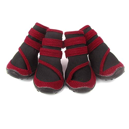 Alfie Pet - Moriah All Weather Set of 4 Dog Boots - Color: Red, Size: XXS ()