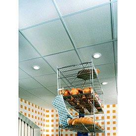 Usg Sheetrocktm Ceiling Panels  Gypsum Panel  White  48  X 24