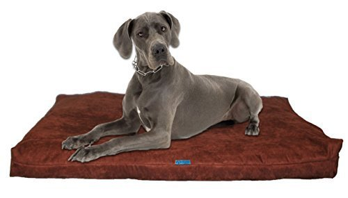 Shredded Memory Foam Orthopedic Dog Bed With Removable Washable 100% Microfiber Passion Suede Cover and Water Resistant Inner Fabric,Made In USA, Brown,For Extra Large Breed Dogs, 55  x 37  by Five Diamond Collection