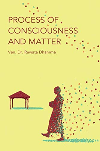 Read Online Process of Consciousness and Matter pdf