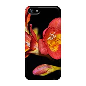 5/5s Perfect Case For Iphone - SlC3190VdZh Case Cover Skin