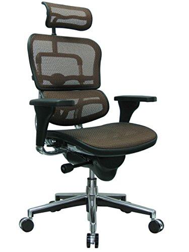 Eurotech Ergohuman Mesh Chair - High-Back Chair With Headrest - Copper  ()