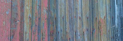 Great Art Now Barn Board by Brenda Petrella Photography LLC