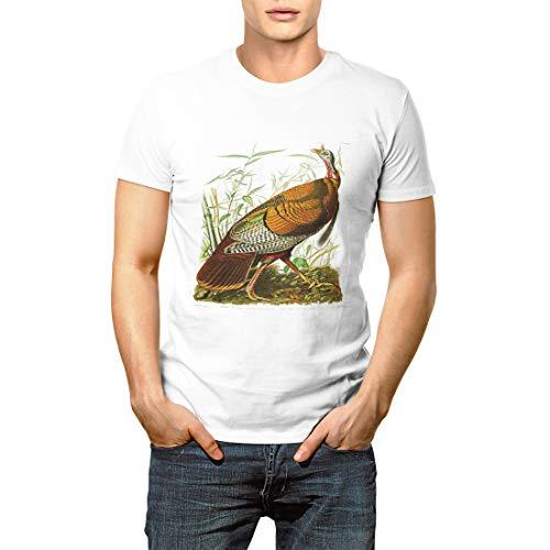 (Nature Wild Turkey John James Audubon Birds of Paintings Men's Short Sleeve T-Shirt)