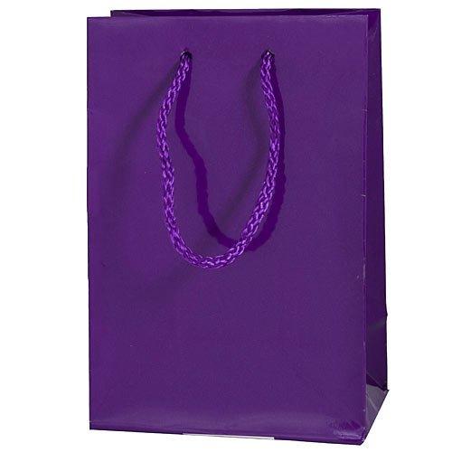 Amscan Party Friendly Mini Glossy Gift Bag, Purple, 7 3/4