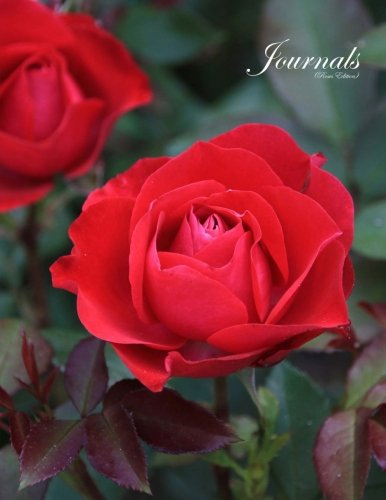 Download Journals Roses: Classic (Lined Pages) Roses Journal Option - ON SALE NOW - JUST $6.99 ebook