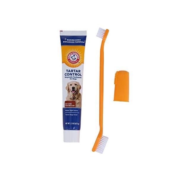 Arm & Hammer Dog Dental Care Tartar Control Kit for Dogs 3