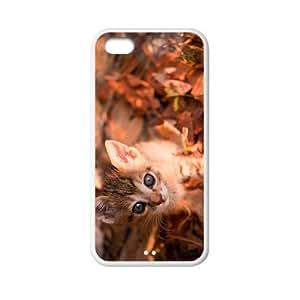 Custom Cat Back Cover Case for iphone 5C JN5C-021