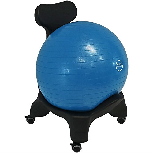 CASL Brands Balance Ball Chair, Exercise Yoga Stability Seat for Home Or Office Desk, Includes Pump and Back Rest by CASL Brands