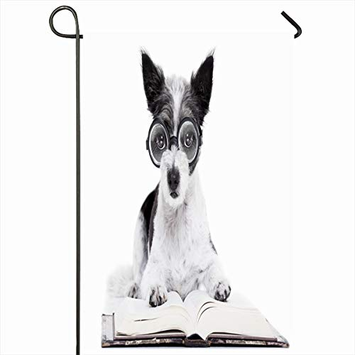 (Ahawoso Seasonal Garden Flag 12x18 Inches Informatitelligent Antique Terrier Dog Reading Book Nerd Data Glasses Blank Bookstore Clever Cool Home Decorative Outdoor Double Sided House Yard Sign)