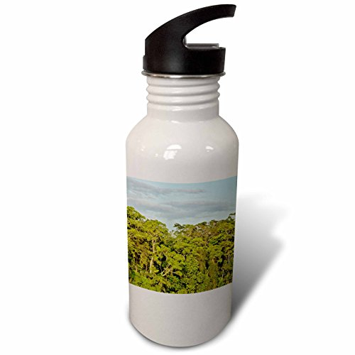 3dRose KIKE CALVO Rainforest Costa Rica Collection  - Tortuguero National Park - Flip Straw 21oz Water Bottle (wb_234120_2)
