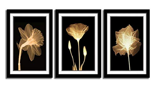 HLJ ART 3 Panels Black Frames Giclee White Mat Artworks Black White and Gold Wall Art Canvas Prints Decor Framed Flowers Painting Poster Printed On Canvas Poppy Pictures for Home Decorations 16x24in