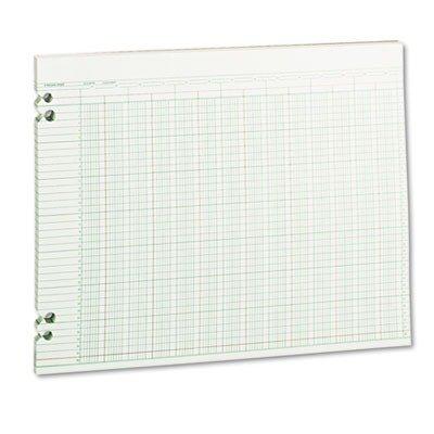 WLJG3024 - Wilson Jones Accounting Sheets