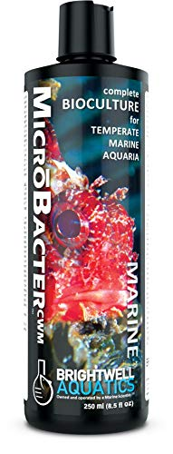 Brightwell Aquatics MicroBacter CWM, complete bioculture for temperate marine aquaria, 250ml (8.5 fl. ()