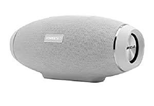 ADIGE Portable Wireless Bluetooth Speaker (WHITE), 31W HD Stereo Audio Woofer, BIG BASS, IPX5, Portable, Indoor/Outdoor, Power Bank, TF Micro SD Card Slot, 3.5mm AUX Input