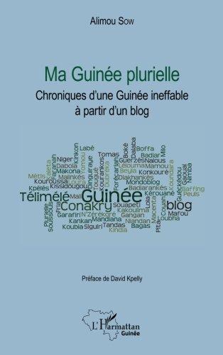 Ma Guinée plurielle: Chroniques d