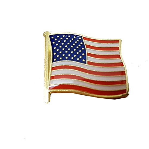 USA Stars and Stripes Lapel Pin - American Flag Badge/America the Beautiful Souvenir/Collectible Old Glory American (Old Badge Lapel Pin)