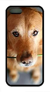 The Puppy Is Carrying The RoCase For Samsung Galsxy S3 I9300 Cover Case Funny Lovely Best Cool Customize Black Cover