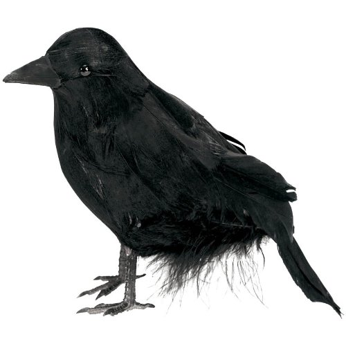 Small Black Haunted House Raven Halloween Trick or Treat Party Decoration, Plastic, (Raven Prop)