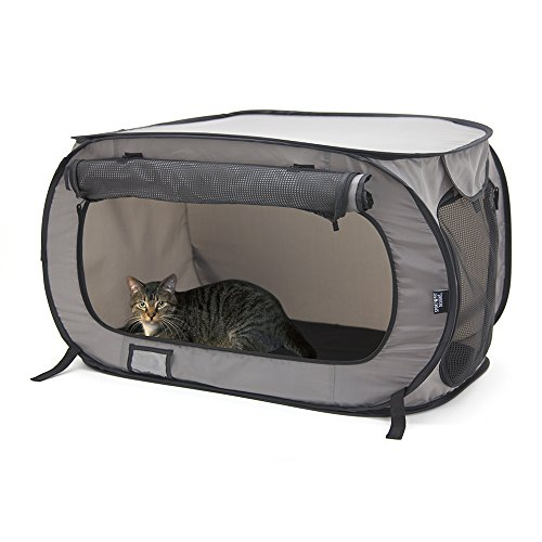 (SportPet Designs Large Pop Open Kennel, Portable Cat Cage Kennel, Waterproof Pet bed, Carrier Collection)
