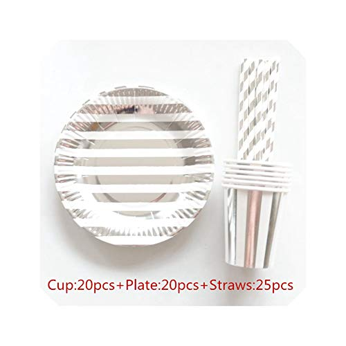 85Pcs Stripe Disposable Paper Plate Cup Napkin Straw Kids Party Tableware Set Birthday Bridal Shower Girls Day,Silver Stripes -