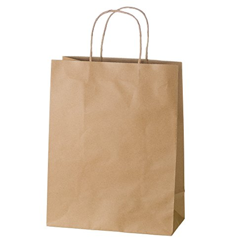 Creative Bag Premium Kraft Paper Boutique Bags with Handles for Wedding, Party Favour, Thank You, and More, Kraft-Coloured Gift Bags, 10