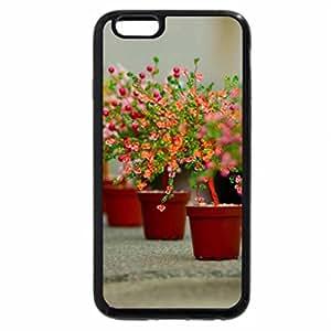 iPhone 6S Plus Case, iPhone 6 Plus Case, Colourful Pots In A Row.
