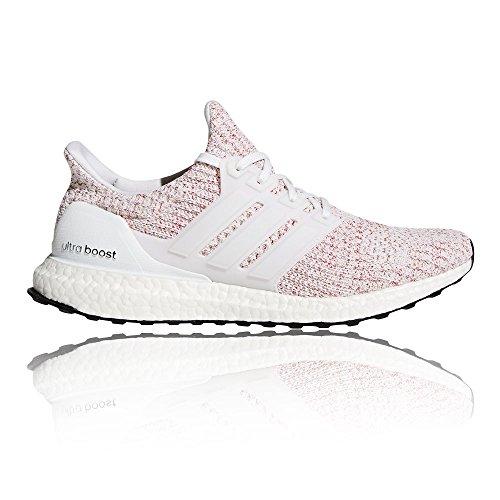 Les Hommes Adidas Ultra Trail Boost Chaussures De Course, Blanc, Gris Deux Blancs (ftwbla / Ftwbla Escarl 000)